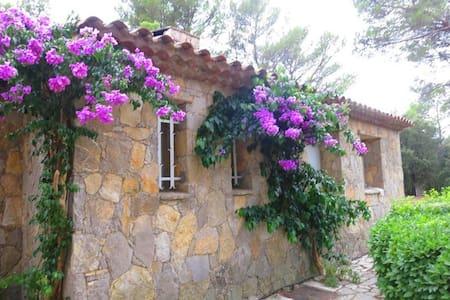 Spacious Provencial Home with pool - Taradeau