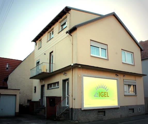 Ferienwohnung-Kurpfalz - Urlaub inmitten der Pfalz - Böhl-Iggelheim - บ้าน
