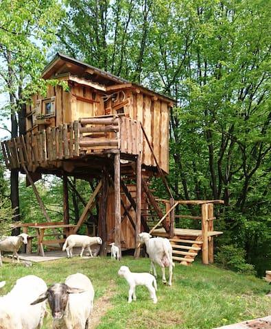 TreeHouse Toplak - Sveti Duh na Ostrem Vrhu - Lombház