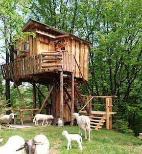 TreeHouse Toplak - Sveti Duh na Ostrem Vrhu - Cabana en un arbre