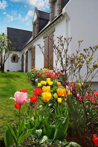 Chez Marie-Françoise