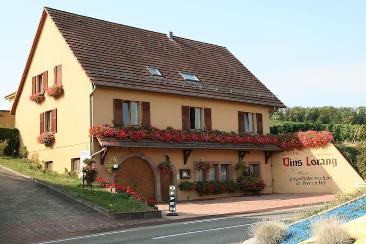 Bienvenue chez Véronique et Philippe - Turckheim - Lakás