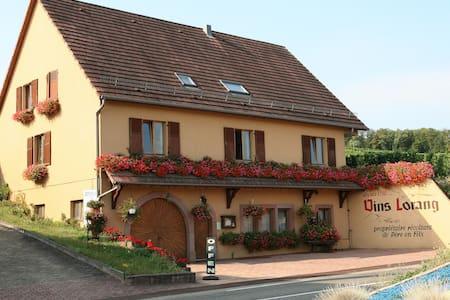 Bienvenue chez Véronique et Philippe - Turckheim - Byt