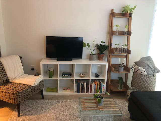 cozy, clean, green home, close to everything!