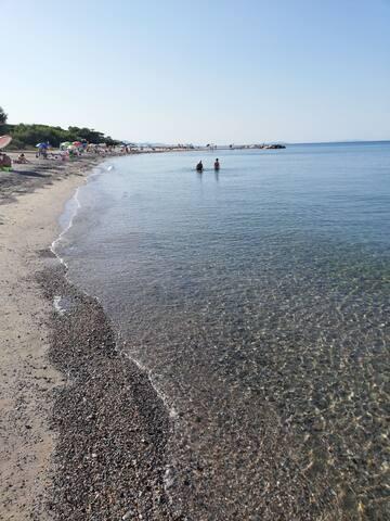 Vicinissimo al mare e pinete