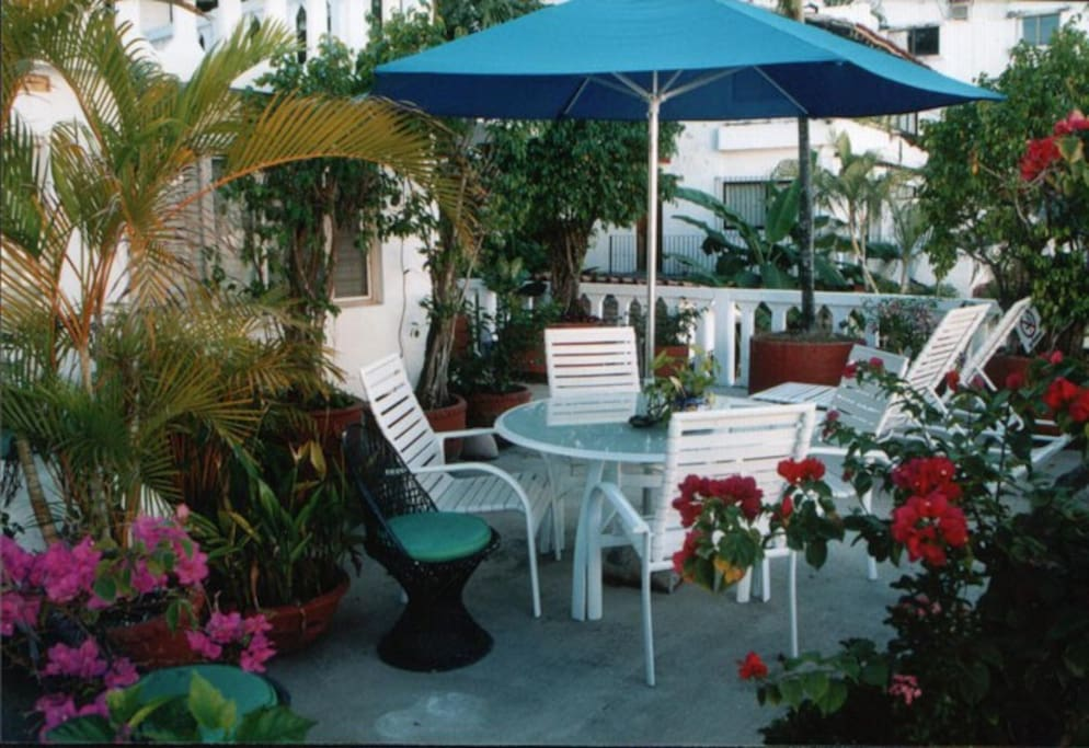 deck with Mexican traditional plants