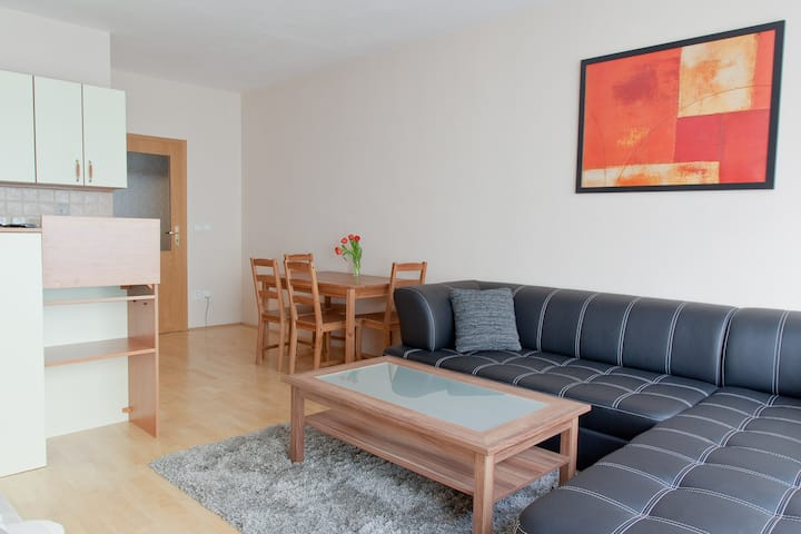 Almost central cosy Apt, terrace & free parking