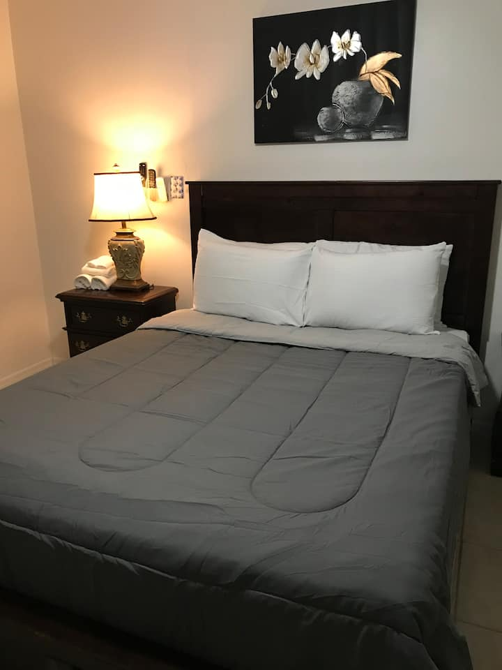 Private Apt 2 near Airport, Down Town, Attractions