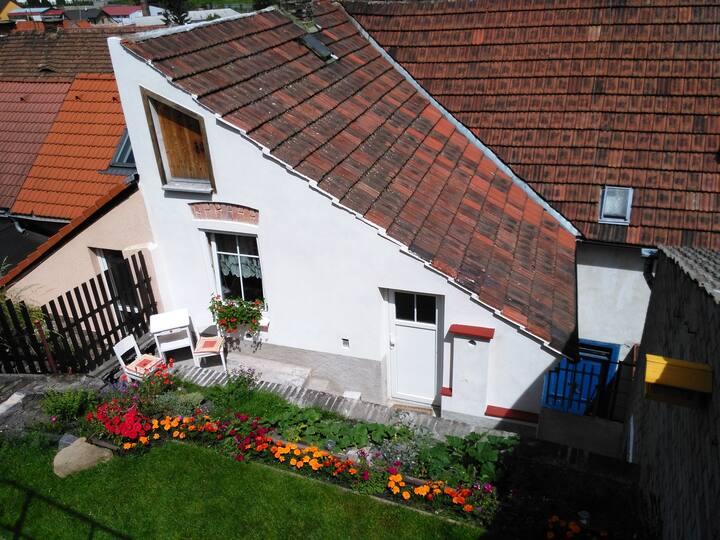 Summer house with private garden (Praha, Letiště)