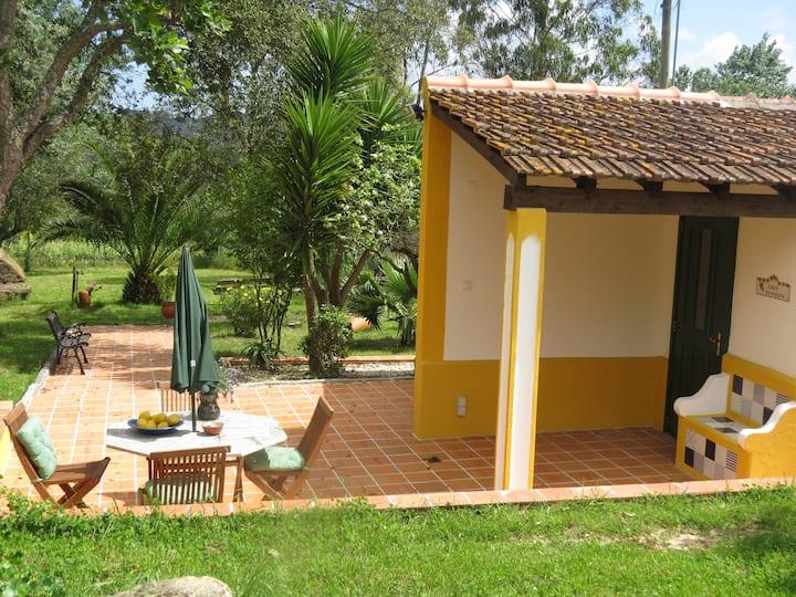 Casa Periquita on vineyard, pool