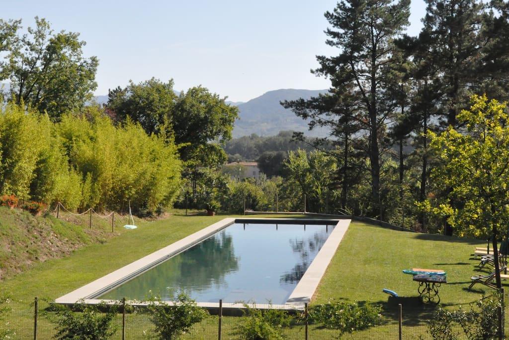 Swimming pool- 82' x 20' (25m x 6m)