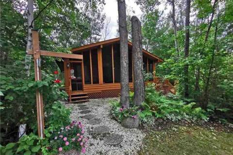 Cheerful 3 bedroom cabin. Minutes from beach!!!