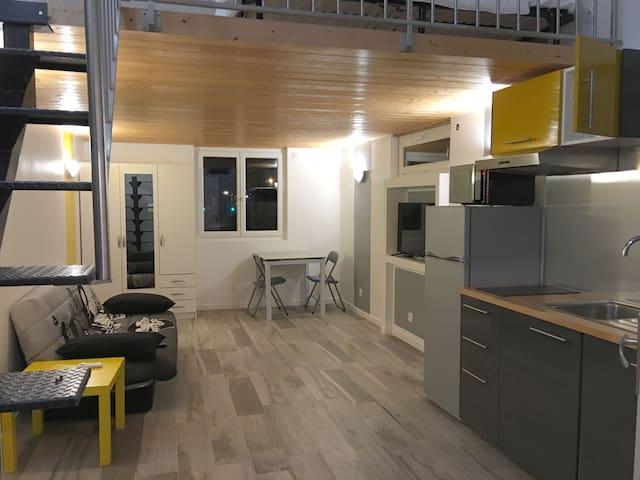 EUREXPO EXPOSANTS-visiteurs Loft 4 pers. - Chassieu - 公寓