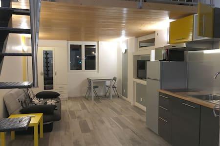 EUREXPO EXPOSANTS-visiteurs Loft 4 pers. - Chassieu - Appartement