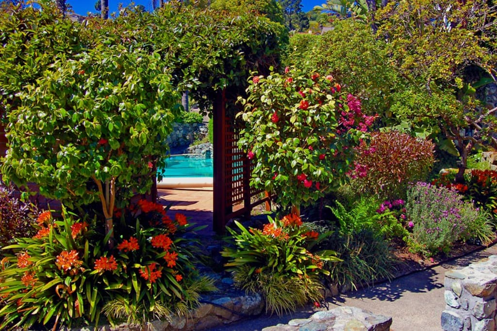Garden and entry to the fabulous pool