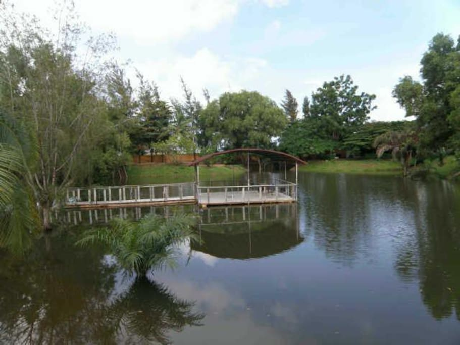 Enjoy the beautiful view of the artificial lake while eating