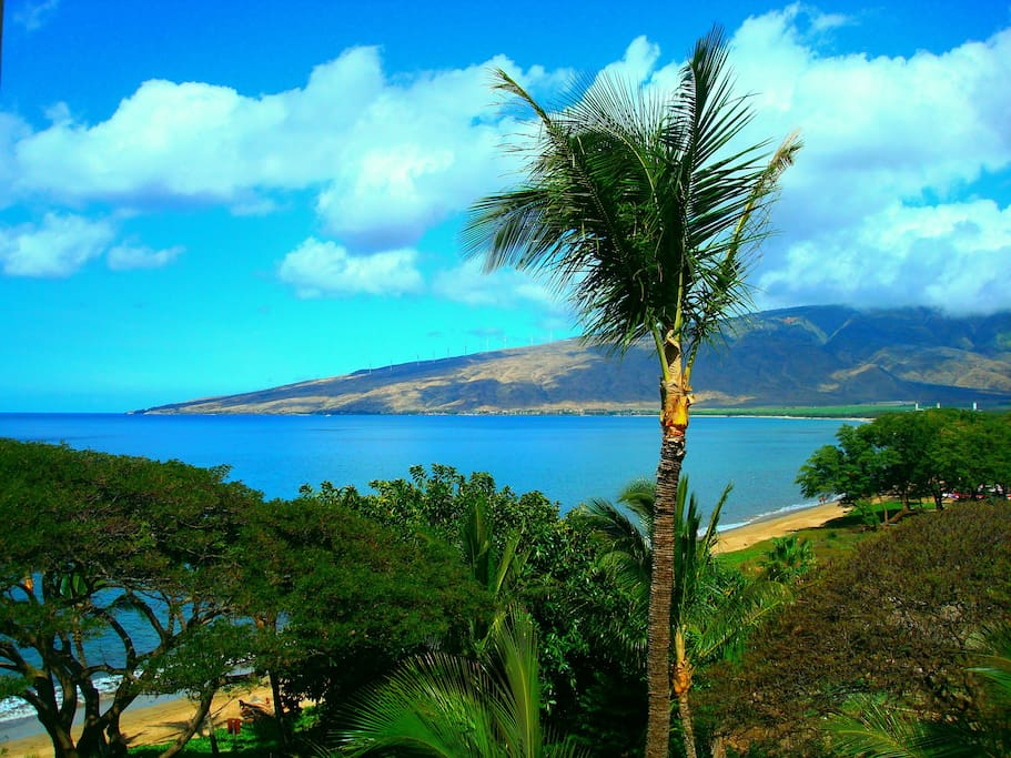 Wake up to expansive ocean & mountain views from your private lanai overlooking Sugar Beach at Kealia Resort!