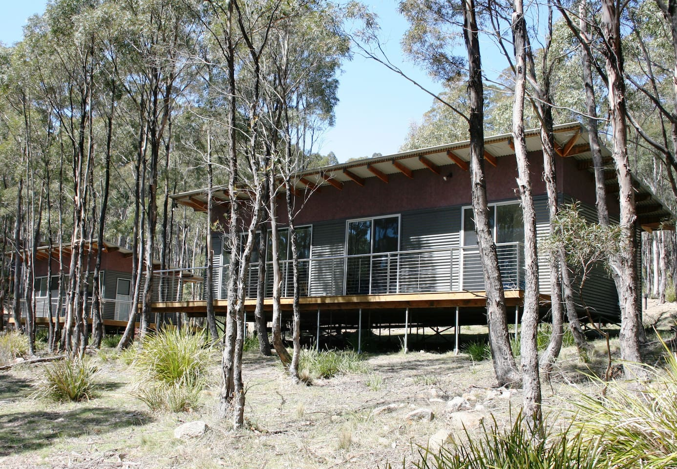 Forester Kangaroo 2 bedroom cabin