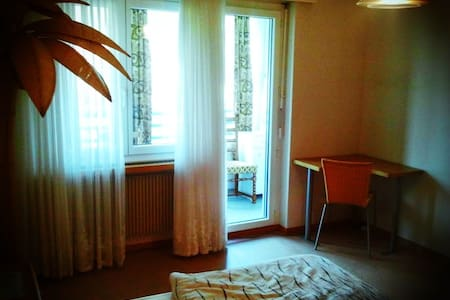 1 Bedroom Flat with KItchen - Zell - Apartamento
