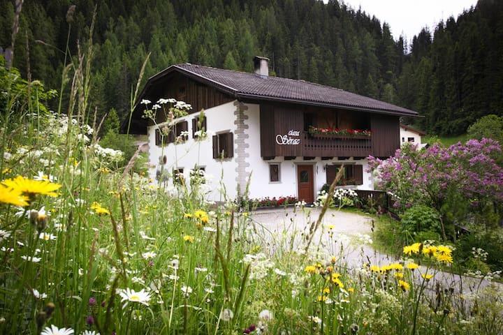 Ciasa Serac' Dolomites - La Valle - Apartment