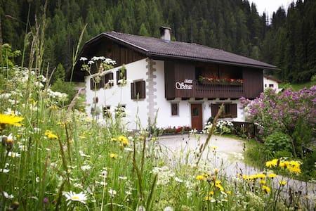 Ciasa Serac' Dolomites - La Valle