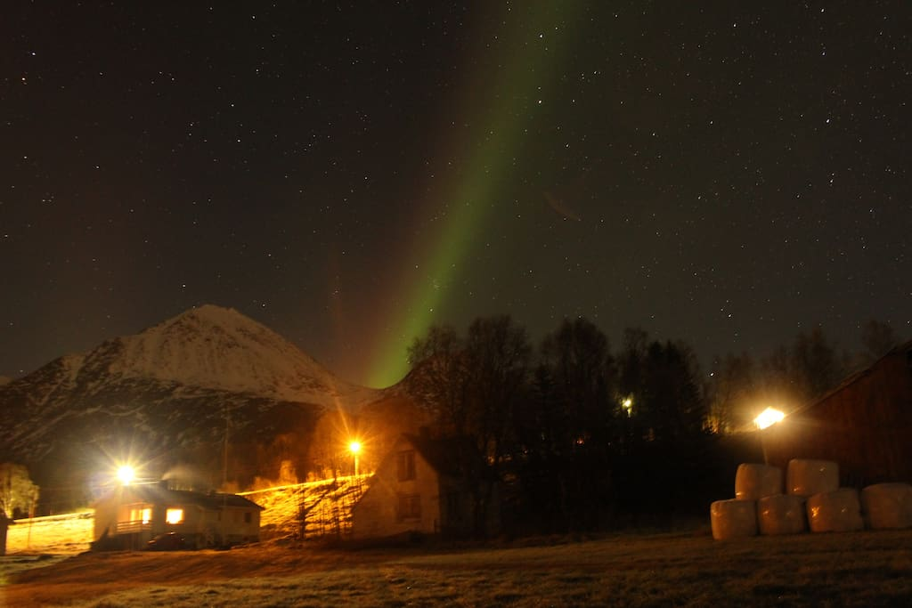 Northern Lights behind the farm a late November evening.