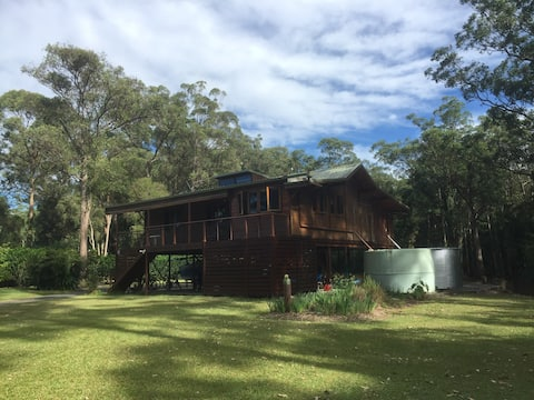 Rainforest Birdhouse - teak cabin on 40 acres