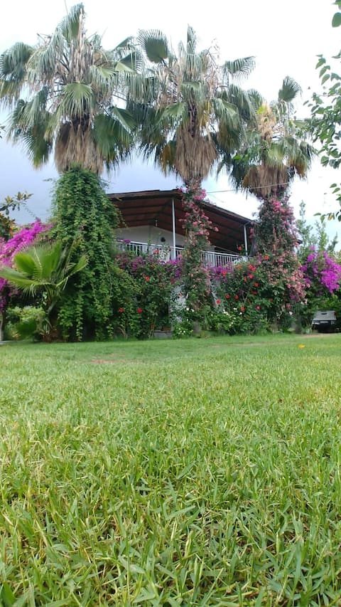 Villa Zumrut in Çıralı