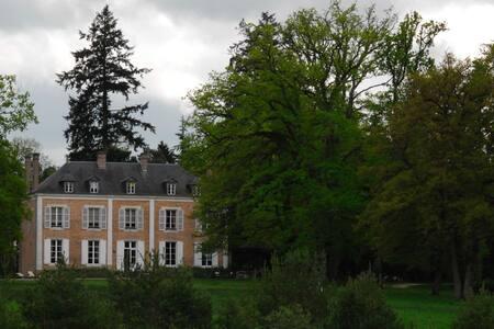 Demeure Le Mousseau - Chaumont-sur-Tharonne - Castle