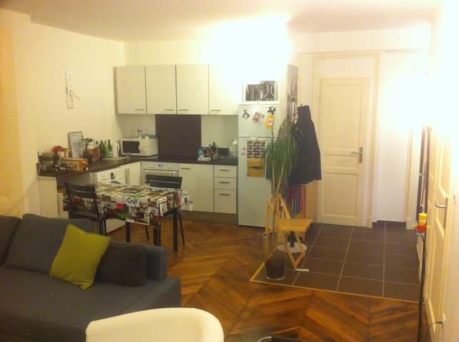 Appart Hyper-centre (Cordeliers) - Lyon - Appartement