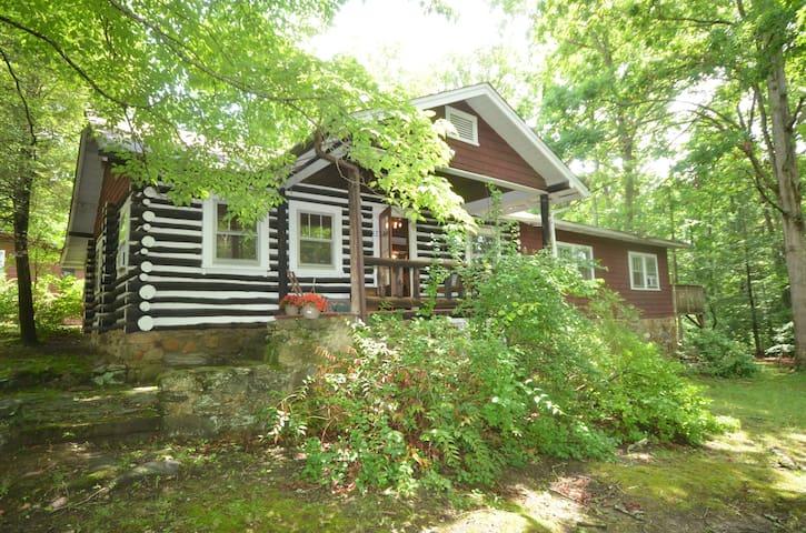 Asheville Dreamer's Cabin