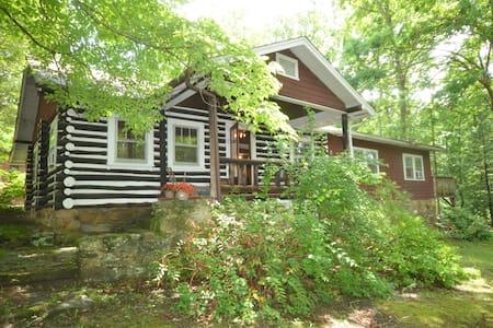 Asheville Dreamer's Cabin , Hot Tub - Asheville