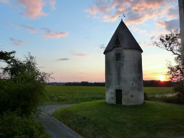 Les Moulins de la Bizetterie  - Gémozac - Casa
