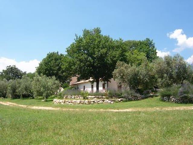 Relax e passeggiate tra gli olivi!!