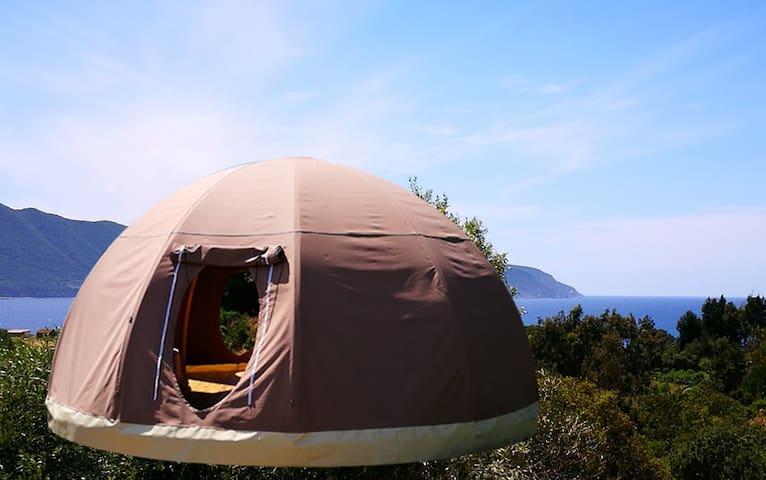 Corsica vera