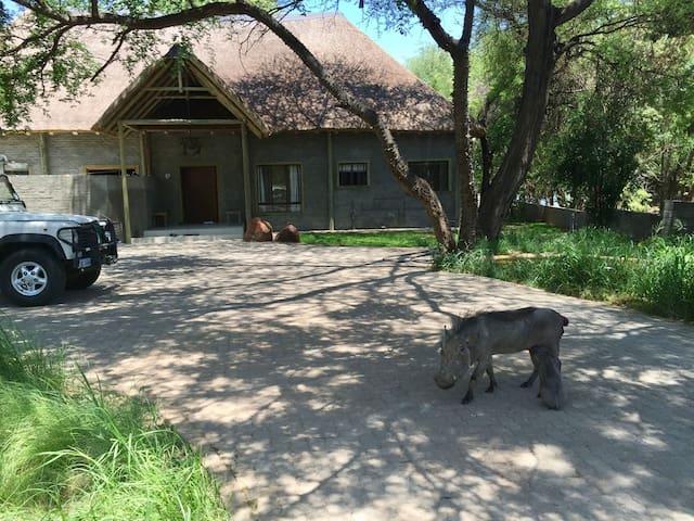 Monkey House, Kasane