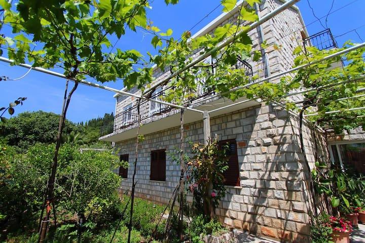 Ivan and Marica house room 3 - Dubrovnik - Hus