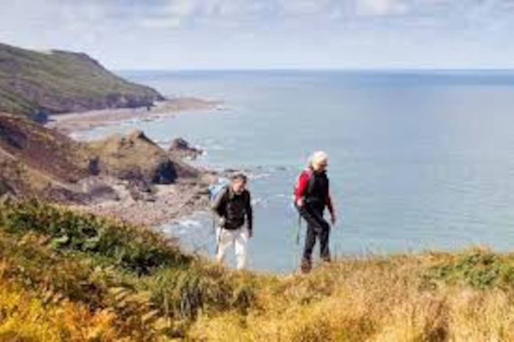 Part of the local cliff path