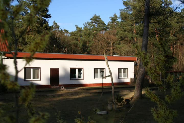Elite Holiday Home in Spreenhagen with Garden