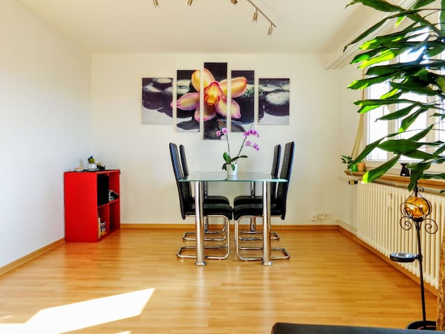 cozy apartment at the top in the middle of lucerne - Luzern - Apartemen