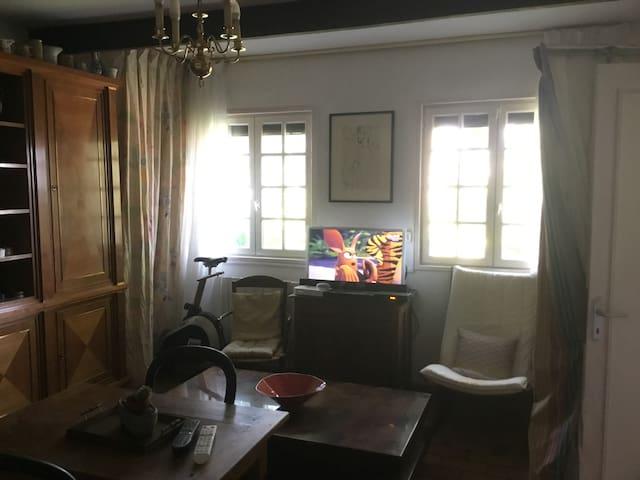 Vue depuis le salon, coin vidéo avec lecteur Blu ray, Google home, télévision par satellite, wifi, …,  vélo d'appartement programmable