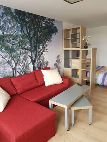 Cozy apartaments near KTU university