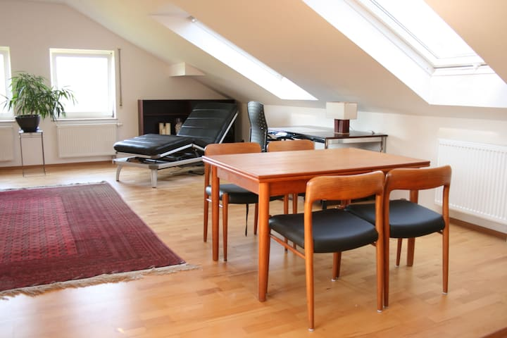 bright friendly roofstudio 47 sqm - Würzburg - Apartment