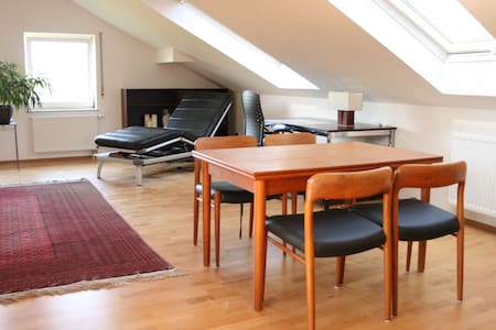 bright friendly roofstudio 47 sqm - Würzburg