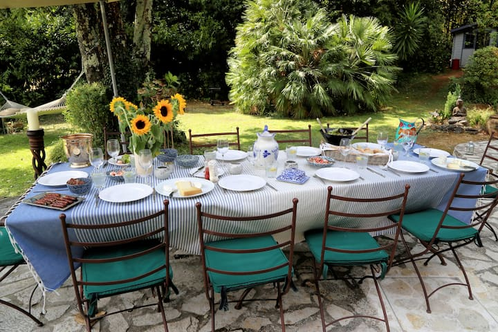 Lunches on the terrace - beautiful shade from the tree,  a hammock to lounge in afterwards and the pool in full sun awaits