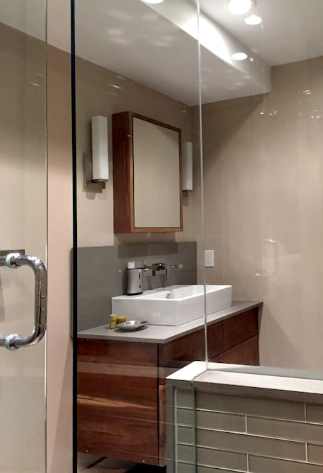 Spa like bathroom with enormous walk in shower