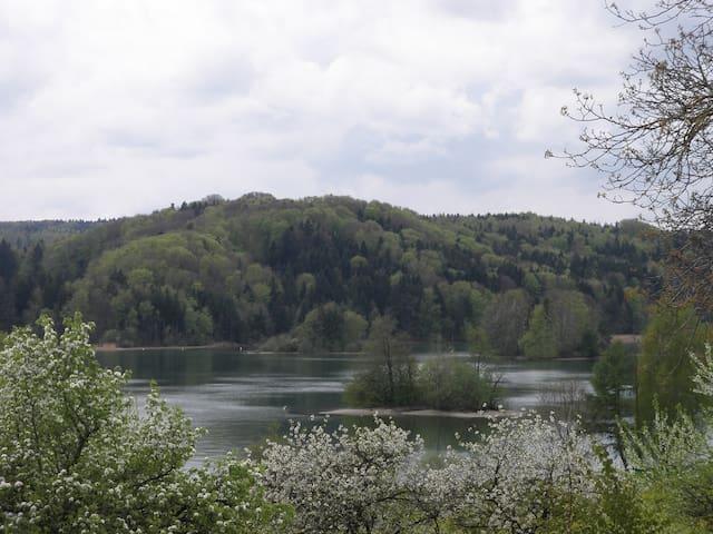 Blick über den Seehamersee von unserem Grundstück im Frühling.
