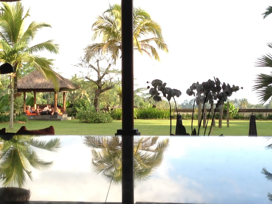 Great view on the pool and the ricefield terraces...