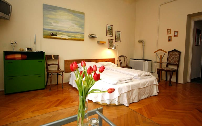 Green Garden & Lovely apartment - Pécs - Pis