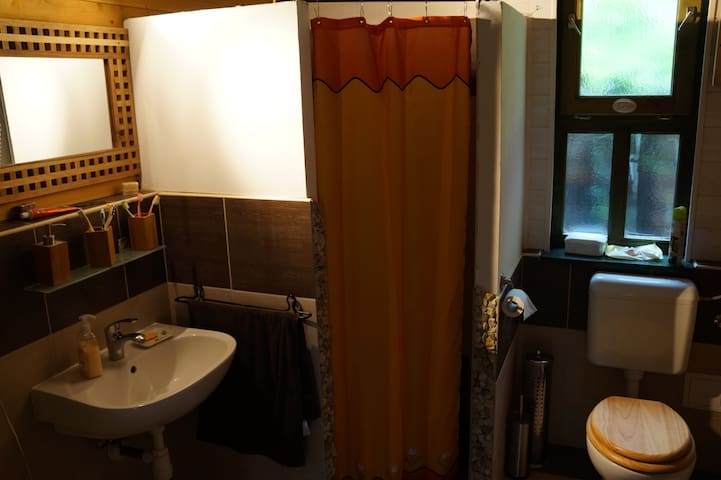 Bathroom with shower& toilette